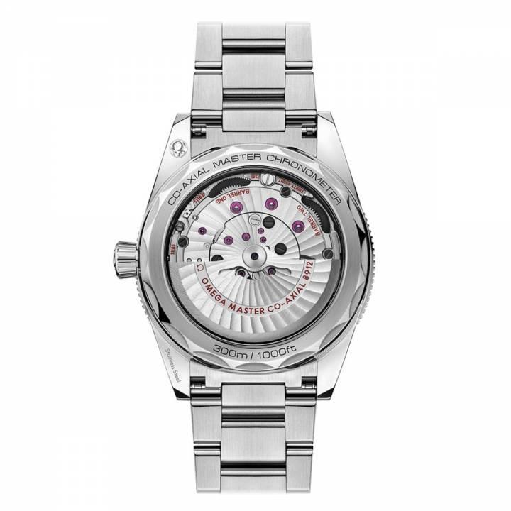 Omega Seamaster 300 Co-Axial Master Chronometer 41 mm (234.30.41.21.01.001)