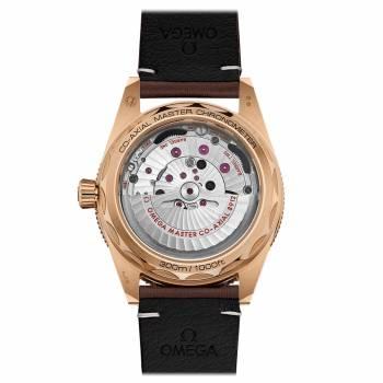 Omega Seamaster 300 Co-Axial Master Chronometer 41 mm (234.92.41.21.10.001)